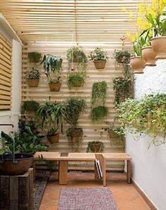 Small garden - great use of space.