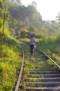 Walking the railway lines, Ella, Sri Lanka                              …