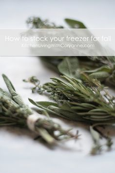 Top tips for stocking your Fall freezer, plus how to freeze herbs by Coryanne Ettiene Food Tips, Food Hacks, Cooking Tips, Freeze Herbs, Preserve Fresh Herbs, Chicken Recepies, Healthy Food, Healthy Eating, Kitchen Pantry Storage