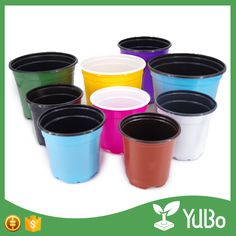 optional all kinds of flower seeds small plastic flower pot for nursery Flower Nursery, Plant Nursery, Potted Plants, Plant Pots, Plastic Flower Pots, Flower Seeds, Home And Garden, China, Technology