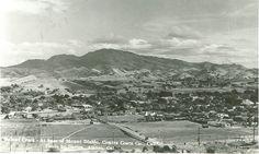 Walnut Creek - at base of Mt. Diablo