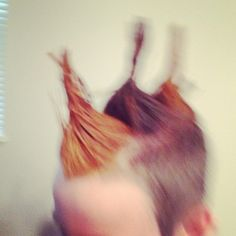 Crazy hair crazy hair days and hair day on pinterest