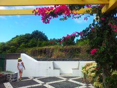 Biscoitos, Praia da Vitoria, ilha Terceira, Açores