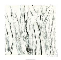 Birches I Premium Giclee Print