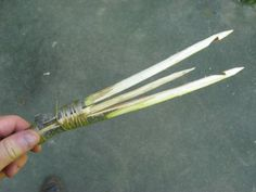 Wilderness Survival - Fish Spears
