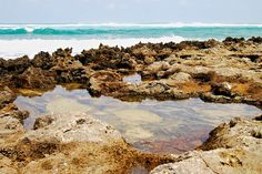 Tide Pools by Turtle Bay SEIS, via Flickr Turtle Bay Resort, North Shore Oahu, Tide Pools, Grand Canyon, Water, Travel, Outdoor, Gripe Water, Outdoors