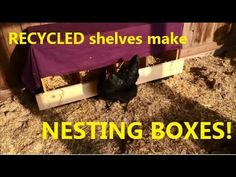Recycled shelves make nesting boxes