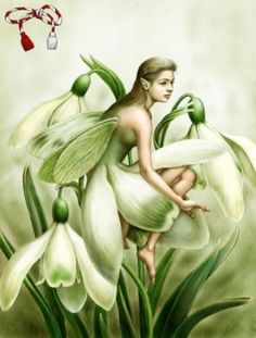 The legend of the Snowdrop. Adam and Eve were kicked out of the Garden of Eden, a place where the sun shone every day, where they . First Flowers Of Spring, Fairy Tattoo Designs, Garden Party Decorations, Jean Baptiste, Garden Of Eden, Adam And Eve, Glass Garden, Selling Jewelry, Animal Tattoos