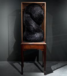 'lure', 2011 by Kate McCwire  Crow feathers and mixed media in an antique mahogany cabinet  159 x 56 x 55 cm