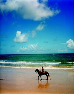 Horseback riding on the trancoso beach, Bahia, Brasil