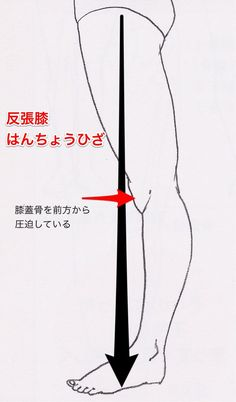 反張膝(膝過伸展)を治す | きこうカイロ施術院 Fitness Diet, Health Fitness, Acupressure Therapy, Horse And Human, Everyday Workout, Face Massage, Massage Techniques, Thigh Exercises, Tattoo Sleeve Designs