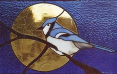Lovely Blue Jay with the moon behind to frame it.
