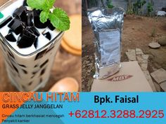 Bubble Drink, Grass Jelly, Dry Leaf, Malang, Panda, Herbalism, Powder, Canning, Drinks