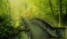 Пейзажи(природа ) | Записи в рубрике Пейзажи(природа ) | Дневник SHER : LiveInternet - Российский Сервис Онлайн-Дневников