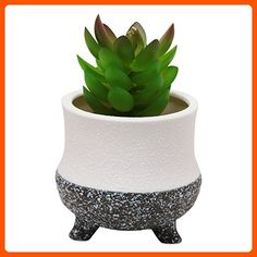 Modern Decorative Small Ceramic Succulent Planter Flower Pot / Desktop Organizer Pen Holder - Lets plant (*Amazon Partner-Link)