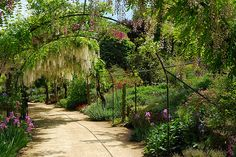 Parc Floral, Apremont-sur-Allier, Cher, Centre, France