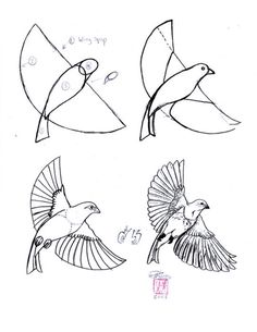 Easy drawing of a bird art at middle school practice drawing birds easy pencil drawings of . easy drawing of a bird Bird Drawings, Easy Drawings, Animal Drawings, Pencil Drawings, Drawing Birds Easy, Flying Bird Drawing, Bird Pencil Drawing, Flying Birds, Horse Drawings