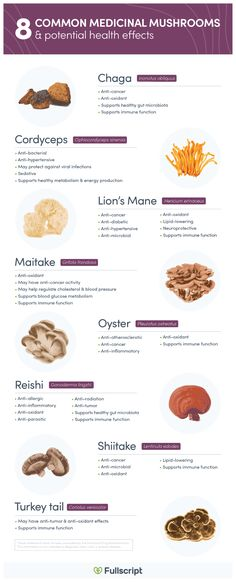 Medicinal mushrooms are edible macroscopic fungi (visible to the naked eye) that are used for their beneficial health properties. Health Benefits Of Mushrooms, Mushroom Benefits, Herbs For Health, Health And Wellness, Health Blogs, Health Articles, Natural Medicine, Herbal Medicine, Maitake Mushroom