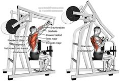 Machine high row. A major compound pull exercise! Main muscles worked: Brachialis, Brachioradialis, Latissimus Dorsi, Teres Major, Middle and Lower Trapezii, Posterior Deltoid, Infraspinatus, Teres Minor, Rhomboid Major, Rhomboid Minor, and Lower Pectoralis Major.