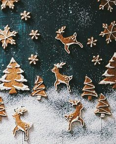 Try our Christmas advent biscuits recipe. Make super simple homemade gingerbread Advent biscuits for Christmas with this easy Christmas cookie recipe. Christmas Mood, Merry Little Christmas, Noel Christmas, Christmas Treats, Christmas Cookies, Christmas Decorations, Christmas Desserts, Reindeer Christmas, Christmas Baking