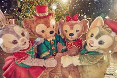 Duffy and his friends - Christmas hug Duffy The Disney Bear, Disney Love, Disney Stuff, Disney Parks, Walt Disney, Realistic Disney Princess, Disney Aesthetic, Mickey And Friends, Disneyland