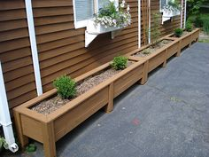 Long row of DIY outdoor planters.