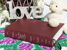 Study Bibles (Bibles rebound by Ace Bookbinding Co. My Bible, Bible Art, Book Rebinding, Bible Prayers, Rebounding, Good To Know, Study, Gift Ideas, Check