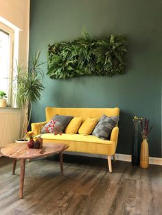 Sofa, Couch, Furniture, Home Decor, Hydroponics, Indoor House Plants, Pictures, Settee, Settee