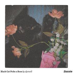 Black Cat Picks a Rose