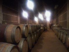Finca Loranque en Bargas, Castilla-La Mancha
