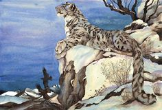 Jackie Morris Childrens Book Illustration, watercolour painting, greetings cards and limited edition prints Snow Leopard Tattoo, Dad Drawing, Art Magique, Art Watercolor, Children's Book Illustration, Animal Illustrations, Pictures To Draw, The Guardian, Cat Art