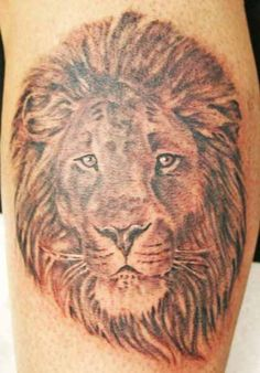 Tattoos High Quality Photos And Flash Designs Of Lions Head Leo Tattoo Designs, Dont Judge People, Flash Design, Leo Tattoos, Animals, Lions, Profile, Photos, User Profile