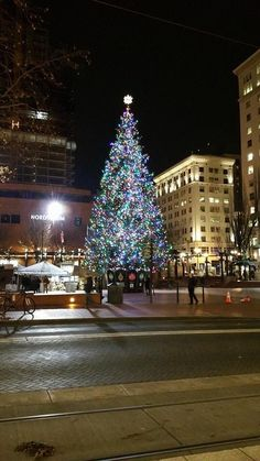 The Christmas Tree In Pioneer Courthouse Square In Portland, Oregon. I Sat  In The