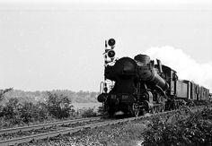 vecchio treno a vapore FS 743 - 339