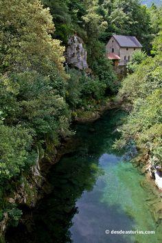 Cabrales Picos de Europa. Qué visitar en Asturias | Spain [Más info] http://www.desdeasturias.com/cabrales-informacion-basica/