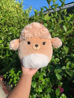 Beauty First, Squishies, 16th Birthday, Poodles, Low Key, Call Her, Kids Toys, Christmas Gifts, Plush