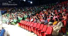 guests were amazed by our dolphins performances! Now it's your turn, book your tickets today and have your very own memorable indoor fun! Visit www. Dubai Dolphinarium, Most Beautiful Animals, Your Turn, Dolphins, Crowd, The Good Place, Exotic, How To Memorize Things