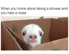 """You taking a relaxing shower: 