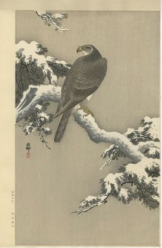KOSON Japanese Woodblock Print EAGLE ON A SNOWY BRANCH 1930s