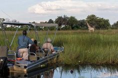 Experience a water safari at Little Vumbura Camp (Okavango Delta, Botswana). For more info just drop us a line: info@gondwanatoursandsafaris.com