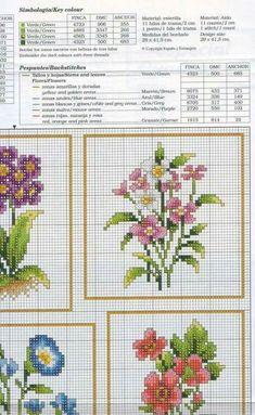 Flores varias 2