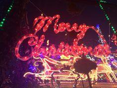 Thomson Street Northcote  #christmasLights The Best Of Christmas, Christmas Lights, Neon Signs, Street, Heidelberg, Christmas Fairy Lights, Walkway