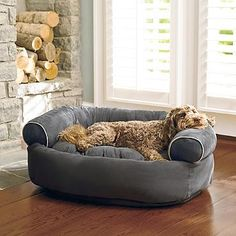 Sofa Dog Bed - Several sizes and colors.  My little Lady is getting older and would appreciate not having to jump so high to get in her chair.
