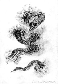 змея эскиз: 14 тыс изображений найдено в Яндекс.Картинках