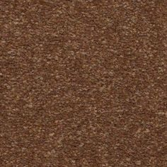 Homeland is a residential plush carpet from Mohawk Carpet. This carpet is made of nylon and features a 15 Year Abrasive Wear Warranty. Paprika Spice, Mohawk Carpet, Plush Carpet, Homeland, Flooring, Color, Mohawk Rugs, Colour, Wood Flooring