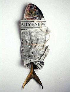 Photographie. Edward Addeo. Poisson (pas) frais. #poisson #journal http://www.edwardaddeo.com/