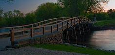 Bridge Elementary School / Homepage