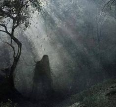 """Hoia-Baciu Forest - Romania - has been called """"The Bermuda Triangle of Transylvania"""". In the 60's the forest gained notoriety when several photos of a UFO were taken. People who enter the forest experience vast feelings of unease while electronic devices suddenly malfunction. There is also increased poltergeist activity. """"Destination Truth"""" visited in 2009 and one of their investigators was ripped from his seat by an unseen force. Shadows and strange lights have also been seen, and voices…"""