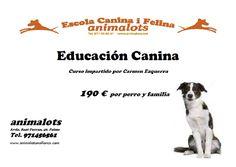 Cartel del Curso Práctico de Educación Canina impartido por Carmen Ezquerra en Animalots Mallorca | 190 € por perro y familia