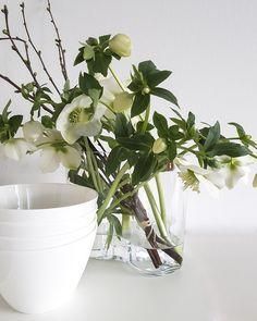 Vorsatz 2018: mehr frische Blumen für das Zuhause. Mit den iittala Alvar Aalto Vasen kommen Schnittblumen besonders schön zur Geltung.